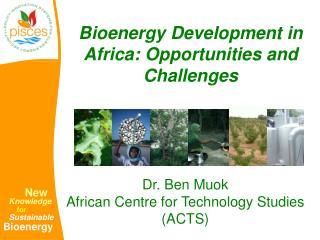 Bioenergy Development in Africa: Opportunities and Challenges
