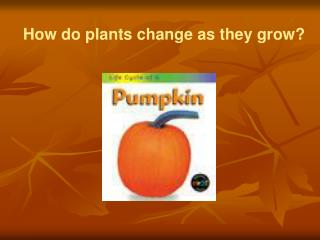 How do plants change as they grow?