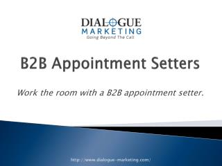 B2B Appointment Setters