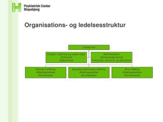Organisations- og ledelsesstruktur