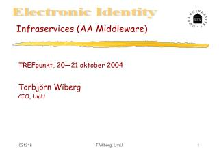 Infraservices (AA Middleware)