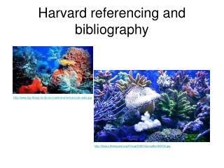 Harvard referencing and bibliography