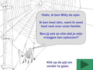 Hallo, ik ben Willy de spin. Ik ben heel slim, want ik weet heel veel over onze familie.