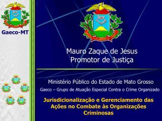 Jurisdicionalização e Gerenciamento das Ações no Combate às Organizações Criminosas