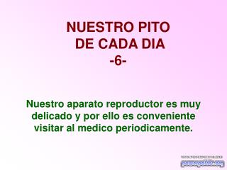 NUESTRO PITO  DE CADA DIA -6-
