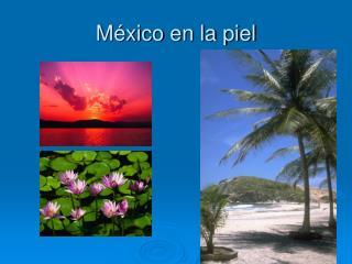 México en la piel