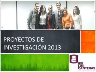 PROYECTOS DE INVESTIGACIÓN 2013