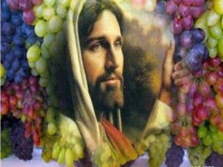 21 DE AGOSTO DE 2014 25º DOMINGO DO TEMPO COMUM TEXTOS BÍBLICOS LEITURA I – Is 55,6-9