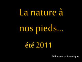 La nature à nos pieds…