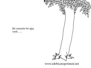 Bir zamanlar bir ağaç vardı…...