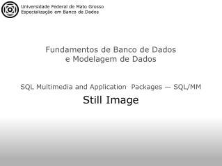 SQL Multimedia and Application  Packages — SQL/MM