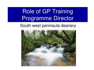 Role of GP Training Programme Director