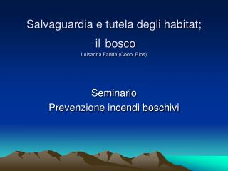Salvaguardia e tutela degli habitat;  il bosco Luisanna Fadda (Coop. Bios)