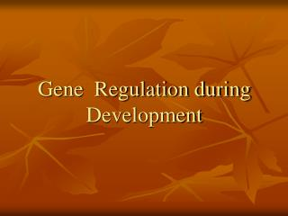 Gene  Regulation during Development