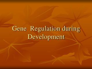 Gene  Regulation during Development