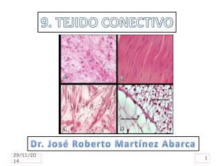 9. TEJIDO CONECTIVO