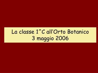La classe 1^C all'Orto Botanico 3 maggio 2006