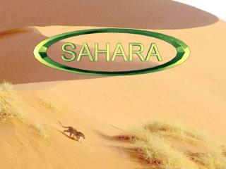Si je vous demande : «Le Sahara, qu'est-ce que cela évoque, pour vous ?» Je pense que vous me