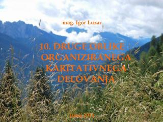 mag. Igor Luzar 10. DRUGE OBLIKE ORGANIZIRANEGA KARITATIVNEGA DELOVANJA Junij 2011
