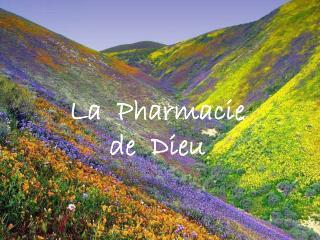 La  Pharmacie   de  Dieu