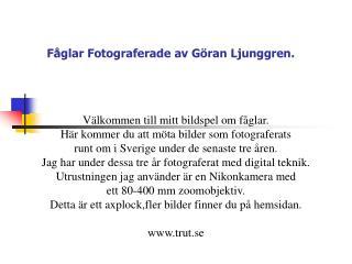 Fåglar Fotograferade av Göran Ljunggren.
