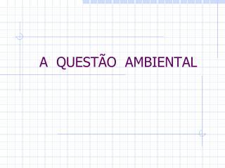 A  QUESTÃO  AMBIENTAL