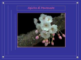 Spirito di Pentecoste