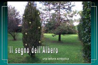 Il segno dell'Albero