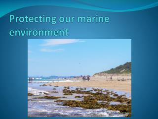 Protecting our marine environment