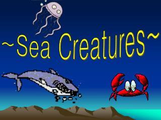 ~Sea Creatures~