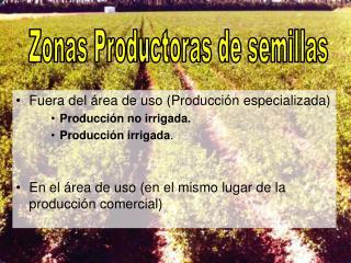 Fuera del área de uso (Producción especializada) Producción no irrigada. Producción irrigada .