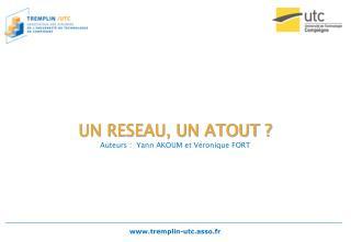 UN RESEAU, UN ATOUT ? Auteurs :  Yann AKOUM et Véronique FORT