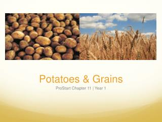 Potatoes & Grains