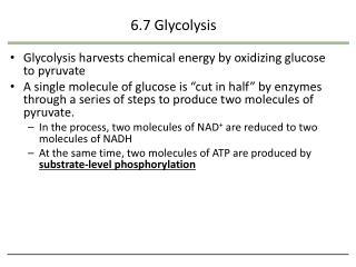 6.7  Glycolysis