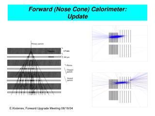 Forward (Nose Cone) Calorimeter:  Update