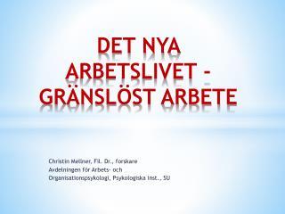 DET NYA  ARBETSLIVET - GRÄNSLÖST ARBETE