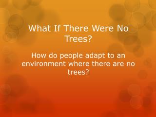 What If There Were No Trees? How do people adapt to an environment where there are no trees?