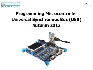 Programming Microcontroller Universal Synchronous Bus (USB) Autumn 2012