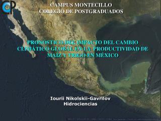 PRONÓSTICO DEL IMPACTO DEL CAMBIO CLIMÁTICO GLOBAL EN LA  PRODUCTIVIDAD DE MAÍZ Y TRIGO EN MÉXICO