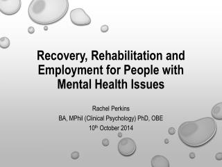 Recovery, Rehabilitation and Employment for People with Mental  H ealth  I ssues