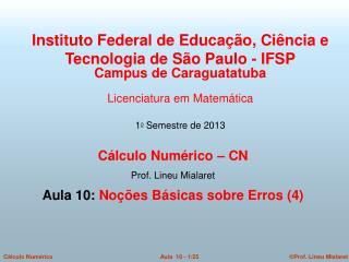 Cálculo Numérico – CN  Prof. Lineu Mialaret  Aula 10:  Noções Básicas sobre Erros (4)