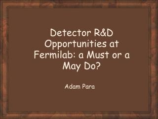 Detector R&D Opportunities at Fermilab: a Must or a May Do?