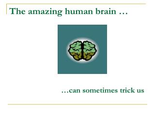 The amazing human brain �