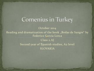 Comenius in Turkey