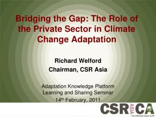 Bridging the Gap: The Role of the Private Sector in Climate Change Adaptation