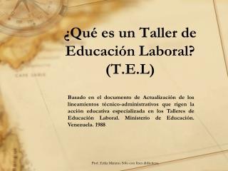¿ Qué es  un Taller de  Educación Laboral ? (T.E.L)