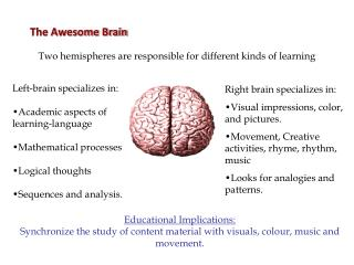 The Awesome Brain