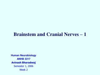 Brainstem and Cranial Nerves � 1
