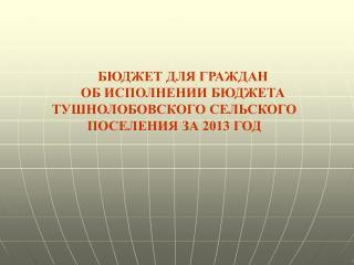 БЮДЖЕТ ДЛЯ ГРАЖДАН  ОБ ИСПОЛНЕНИИ БЮДЖЕТА ТУШНОЛОБОВСКОГО СЕЛЬСКОГО ПОСЕЛЕНИЯ ЗА 2013 ГОД