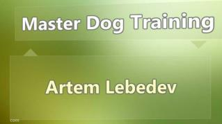 ppt 7888 Master Dog Training
